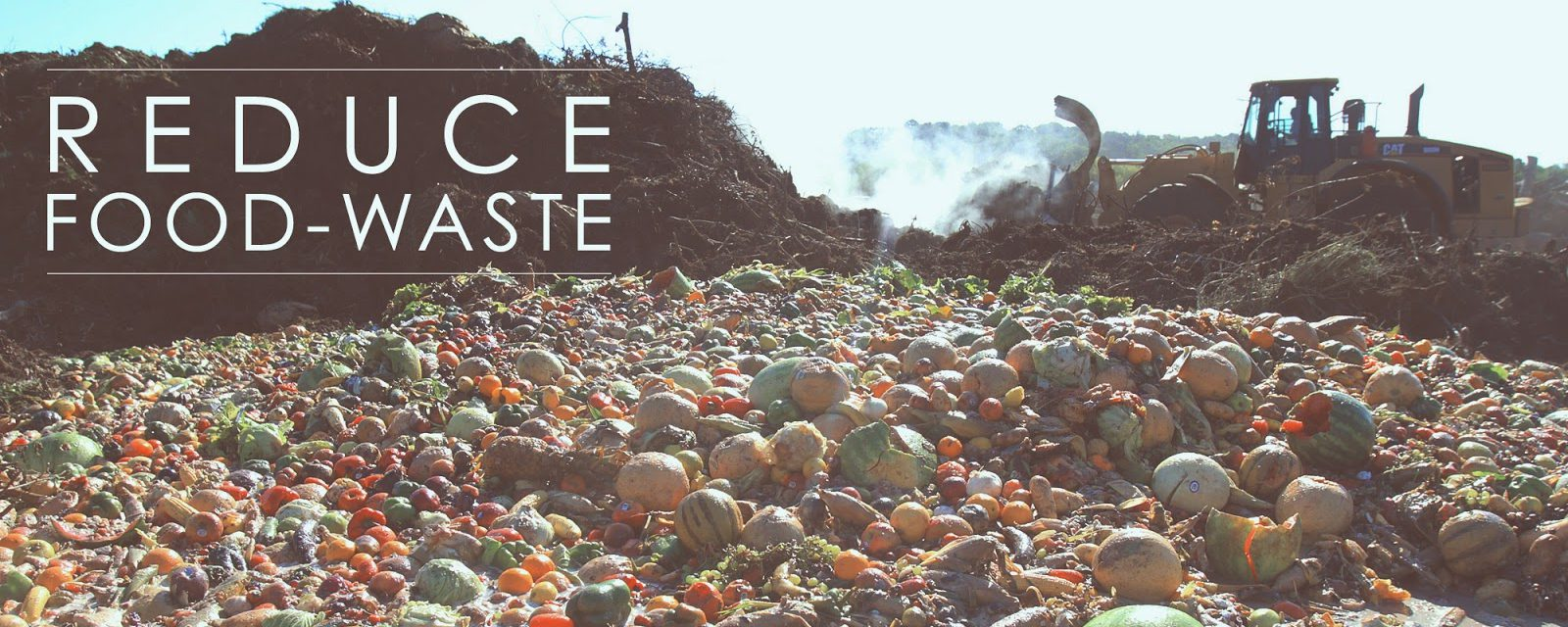 Wait…What?: The Weight of Food Waste